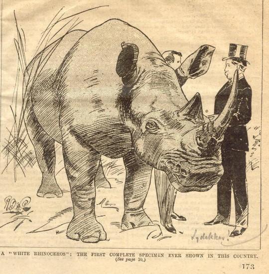 Graphic 1894