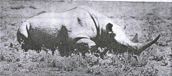 Kenya 1912