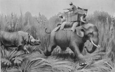 Assam 1904