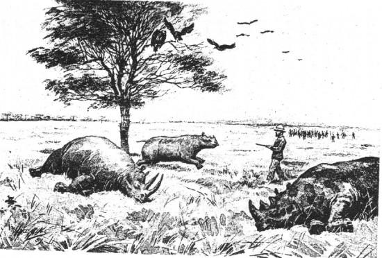 Kimengelia 1889