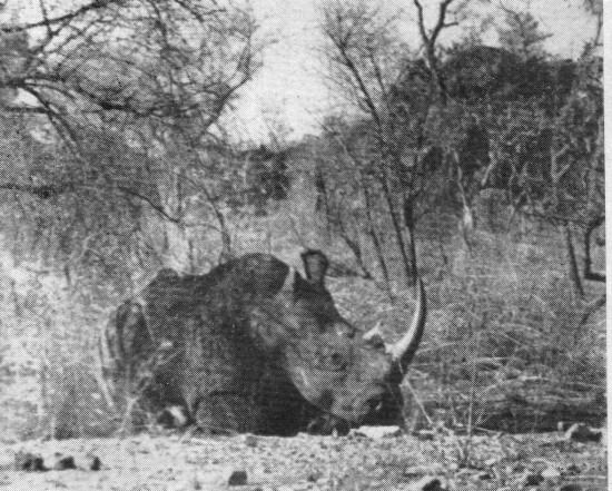 Uganda 1950