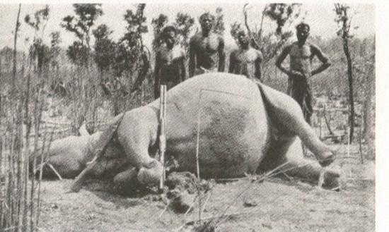 Zambia 1920