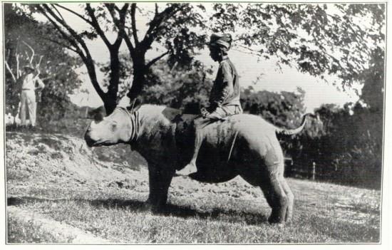 Yangon 1916