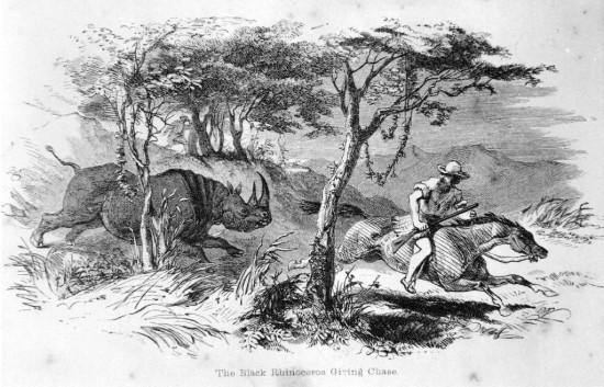 Cumming 1851