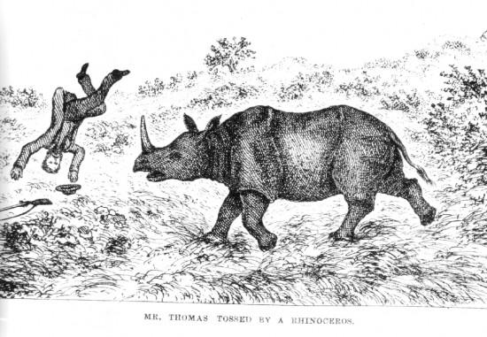 Thomas 1872
