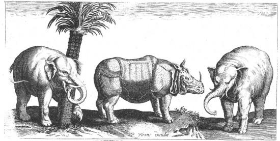 Collaert 1610