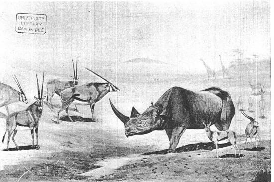 Kenya 1908