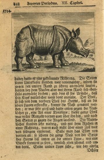 Nunzer 1780