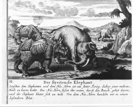 Homann 1747