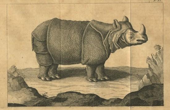 Chardin 1711