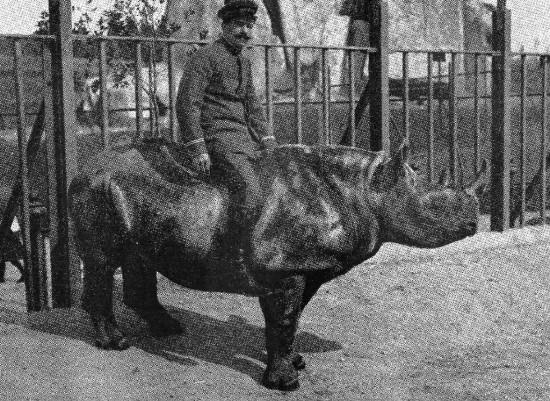 Rome 1911