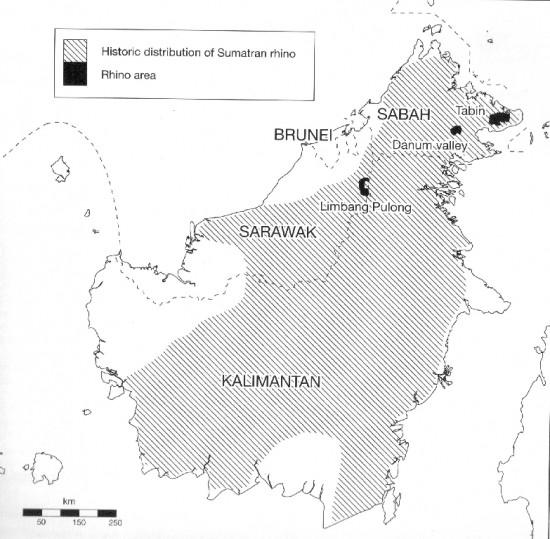 Range Borneo