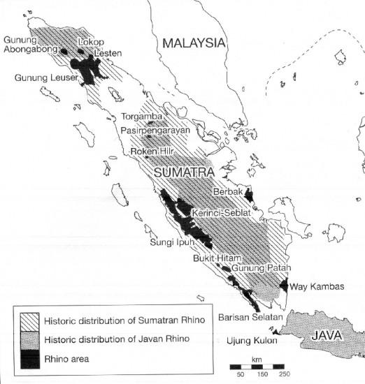 Range Sumatra