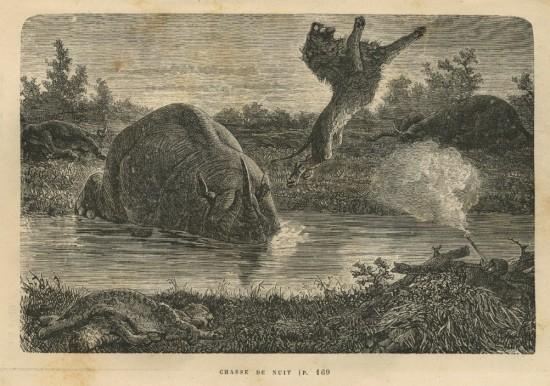 Baldwin's African Hunting