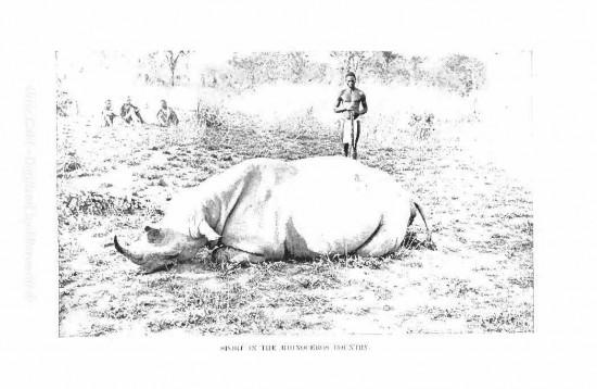 Foa 1899
