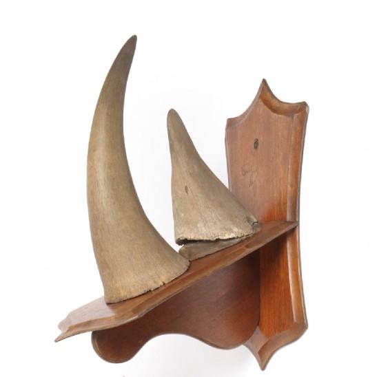 Horns 1920