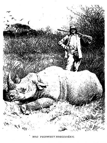 Potocki and rhino