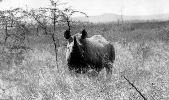 Tanzania 1957