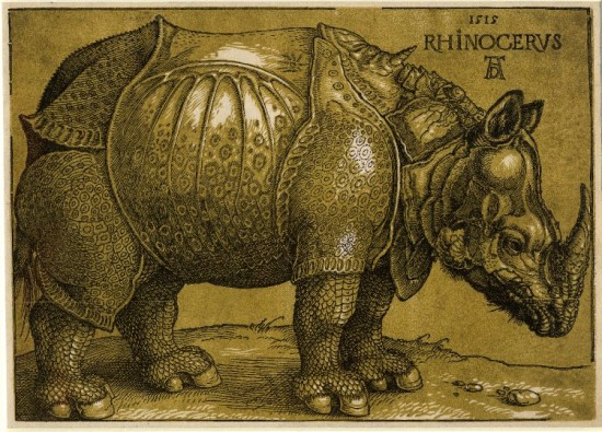 Dürer chiarosuro print