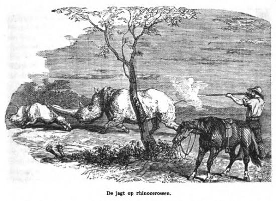 Livingstone p.248