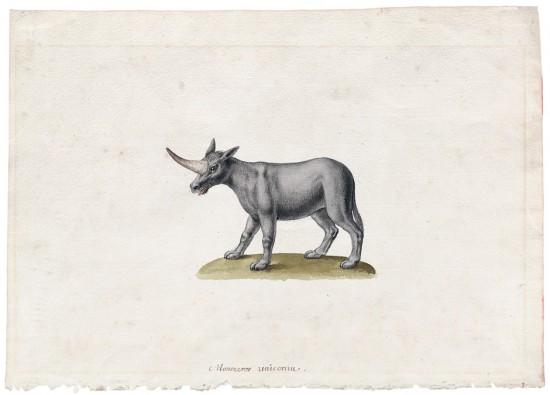 18th century unicorn