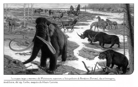 The Late Pleistocene steppe-taiga at Settepolesini di Bondeno (Ferrara, N-Italy)