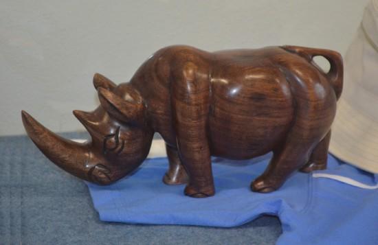 African woody rhinoceros