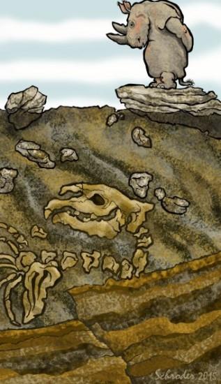 Schroder: Old Bones