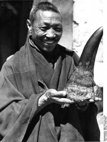 Tibet monk with horn