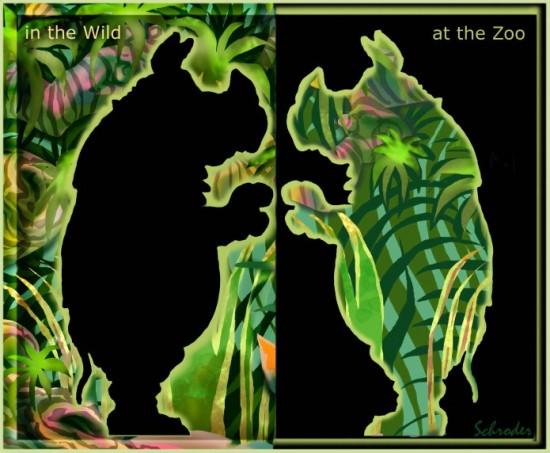 Schroder: Zoos
