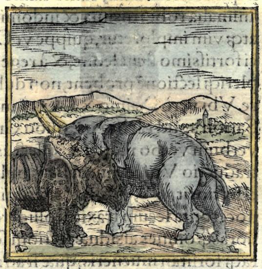 Valerianus Hieroglyphica
