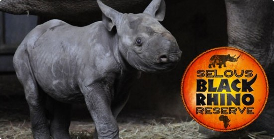 Selous Black Rhino Reserve