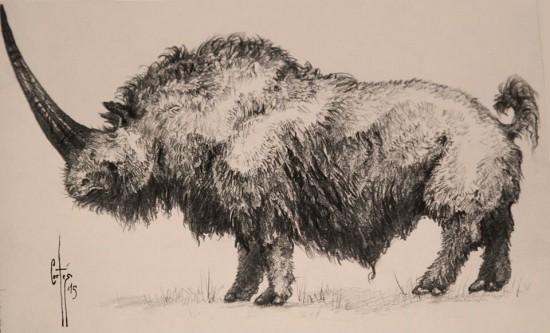 Reconstruction of Elasmotherium (Fischer) after M. Fernández Cortés