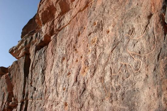 An African rhinoceros engraved on the rock at In Habeter (Uadi Mathendush, Akakus, Fezzan, Libya)