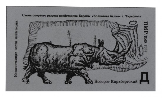 A Stephanorhinus kirchbergensis on a postage stamp from Transnistria