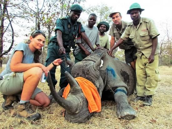 Malawi rhino project