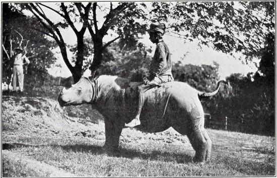 Rangoon 1913