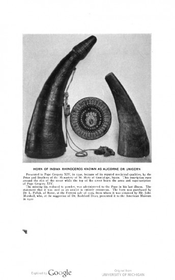 Pope Gregory XIV rhino horn