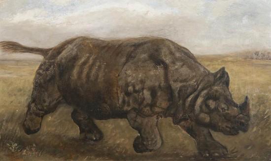 Nettleship rhinoceros