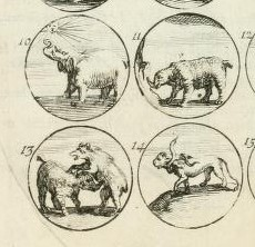 Verien 1685 emblems