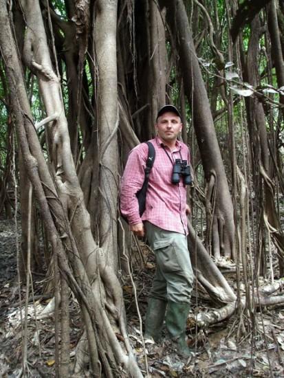 Krisztián Gyöngyi