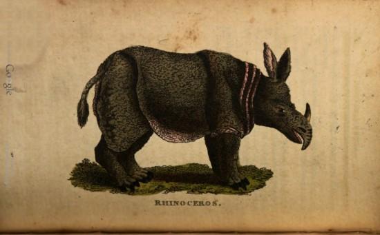 British Repository 1803
