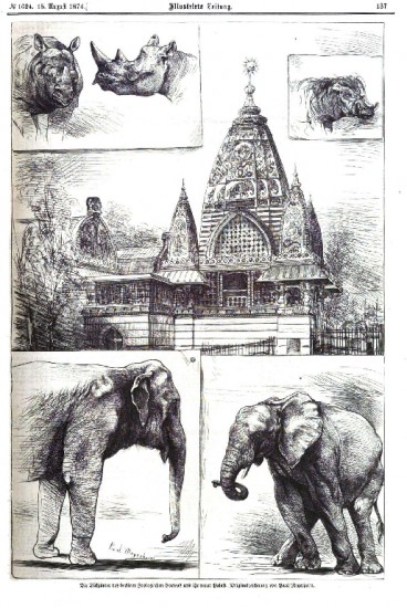 Berlin Zoo Rhino Palace 1874