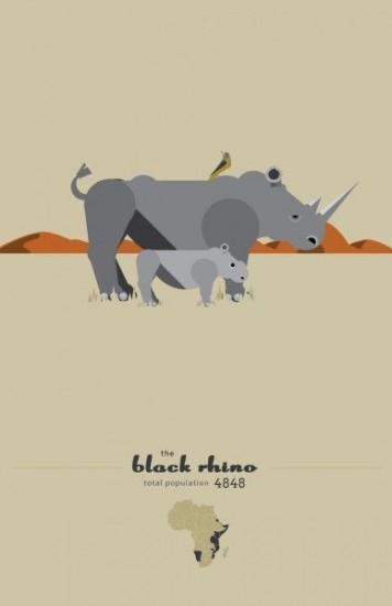 Black rhinoceros population