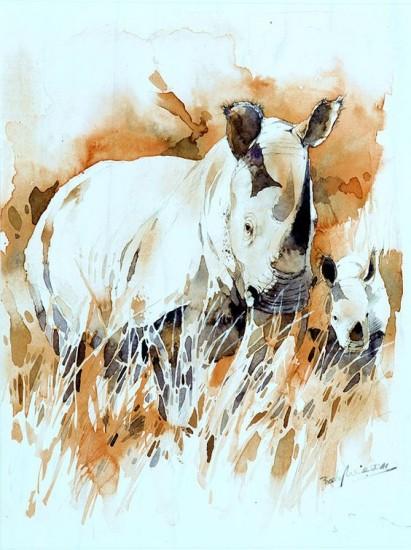 White rhinoceroses (watercolor)