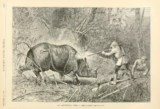 Rhinoceros hunt in Indochina