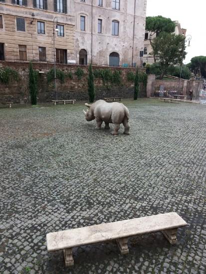 A Ceratotherium in the historic centre of Rome