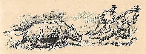 Rhino hunt on Kilimanjaro