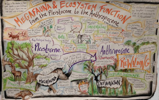 Megafauna & Ecosystem Function from the Pleistocene to the Anthropocene