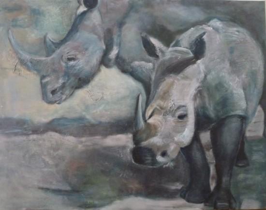 Dijkstra - white rhino in Kruger